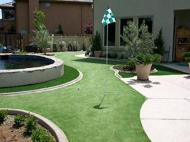 Artificial Grass Photos: Grass Carpet Alpine, Colorado Rooftop, Small Backyard Ideas