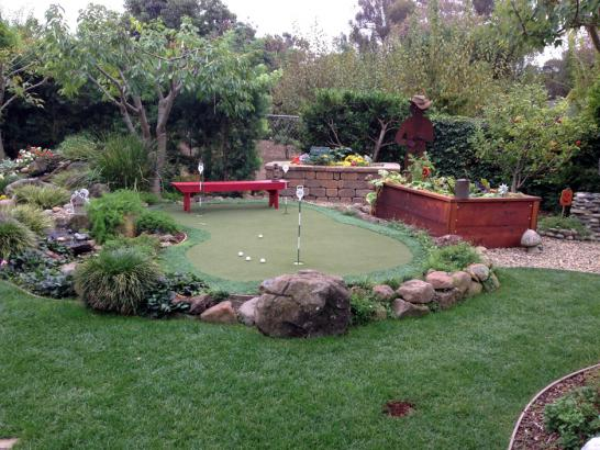 Artificial Grass Photos: Grass Carpet Erie, Colorado Putting Green Carpet, Small Backyard Ideas