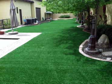 Artificial Grass Photos: Grass Carpet Flagler, Colorado Garden Ideas, Backyard Landscaping Ideas
