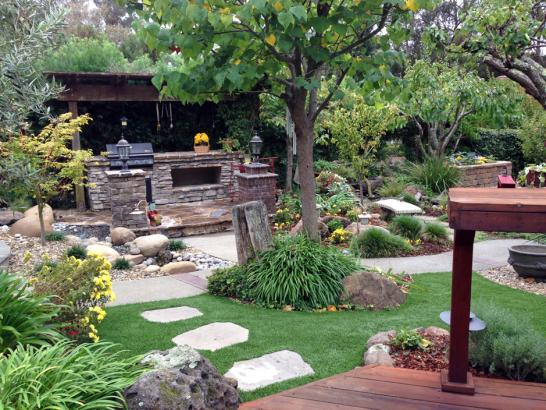 Artificial Grass Photos: Grass Carpet Niwot, Colorado Gardeners, Backyard Landscaping Ideas