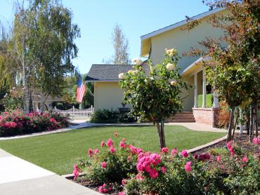 Artificial Grass Photos: Grass Installation Norwood, Colorado Backyard Playground, Small Front Yard Landscaping