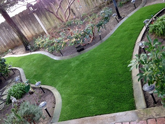 Artificial Grass Photos: Grass Installation Redstone, Colorado Roof Top, Backyard Landscaping