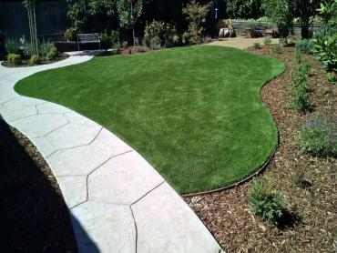 Artificial Grass Photos: Grass Installation Salt Creek, Colorado Garden Ideas, Front Yard