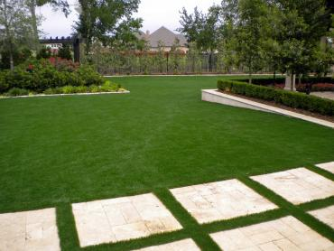 Artificial Grass Photos: Grass Turf Genesee, Colorado Home And Garden, Backyard Designs