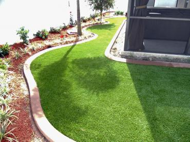 Artificial Grass Photos: Grass Turf Salida, Colorado Landscape Rock, Backyard Design