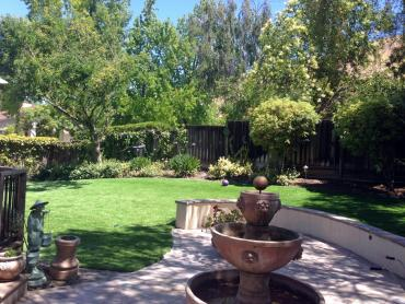 Artificial Grass Photos: Grass Turf Seven Hills, Colorado Landscape Ideas, Backyard Makeover