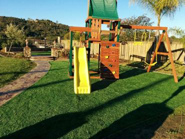 Artificial Grass Photos: Grass Turf West Pleasant View, Colorado Playground Flooring, Backyard Ideas