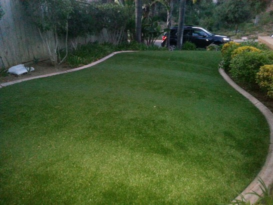 Artificial Grass Photos: Green Lawn De Beque, Colorado Landscaping Business, Small Front Yard Landscaping