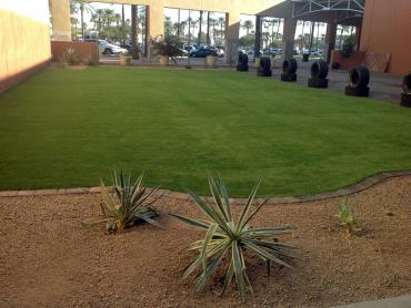 Artificial Grass Photos: Green Lawn Springfield, Colorado Garden Ideas, Commercial Landscape