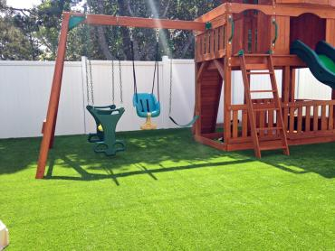 Artificial Grass Photos: Green Lawn Swink, Colorado Landscaping, Backyard Design