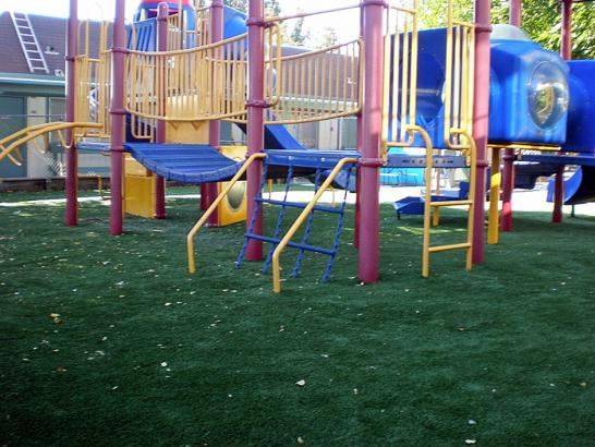 Artificial Grass Photos: Green Lawn Victor, Colorado Playground Turf, Commercial Landscape