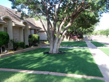 Artificial Grass Photos: How To Install Artificial Grass Snyder, Colorado Roof Top, Front Yard