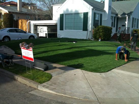 Artificial Grass Photos: Installing Artificial Grass Superior, Colorado Gardeners, Front Yard Landscape Ideas