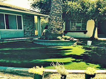 Artificial Grass Photos: Lawn Services Cheraw, Colorado Design Ideas, Front Yard Ideas