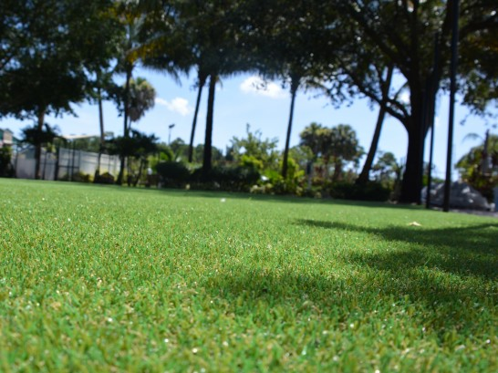 Artificial Grass Photos: Lawn Services Monte Vista, Colorado City Landscape, Recreational Areas