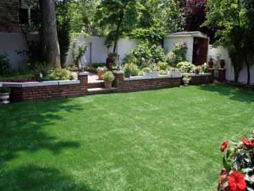 Artificial Grass Photos: Lawn Services Pueblo, Colorado City Landscape, Backyard Design