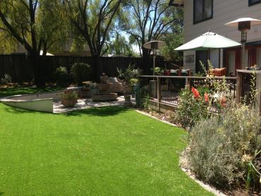 Artificial Grass Photos: Outdoor Carpet Colorado Springs, Colorado Lawn And Garden, Backyard Landscape Ideas