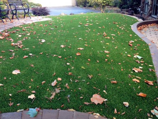 Artificial Grass Photos: Plastic Grass Berthoud, Colorado Backyard Deck Ideas, Front Yard Landscaping Ideas