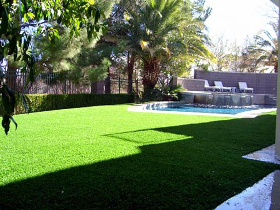 Artificial Grass Photos: Plastic Grass Gilcrest, Colorado Landscape Photos, Backyard Landscaping