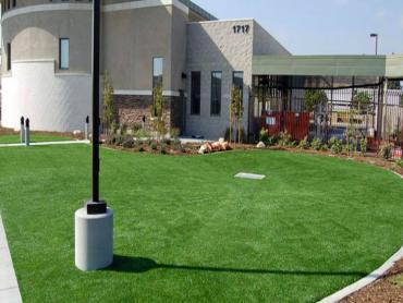 Artificial Grass Photos: Plastic Grass Jansen, Colorado Landscaping Business, Commercial Landscape