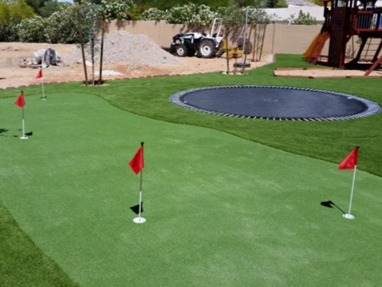 Artificial Grass Photos: Plastic Grass Stonewall Gap, Colorado Indoor Putting Greens, Backyards