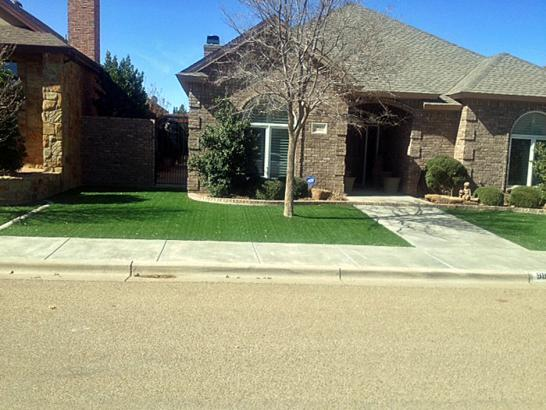 Artificial Grass Photos: Plastic Grass Tall Timber, Colorado Landscaping Business, Landscaping Ideas For Front Yard