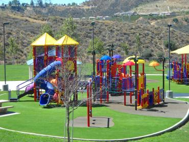 Artificial Grass Photos: Plastic Grass Williamsburg, Colorado Indoor Playground, Recreational Areas