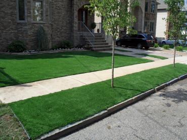 Artificial Grass Photos: Synthetic Grass Coal Creek, Colorado Backyard Deck Ideas, Front Yard Landscaping Ideas