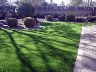 Artificial Grass Photos: Synthetic Grass Cost Buena Vista, Colorado Rooftop, Front Yard