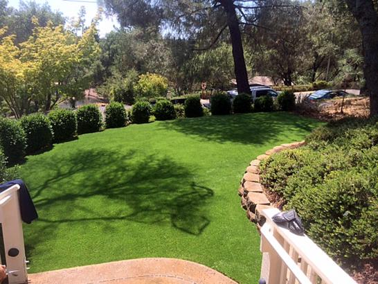 Artificial Grass Photos: Synthetic Grass Cost Crisman, Colorado Lawns, Beautiful Backyards