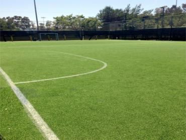 Artificial Grass Photos: Synthetic Grass Cost Empire, Colorado Bocce Ball Court