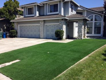 Artificial Grass Photos: Synthetic Grass Cost Estes Park, Colorado Roof Top, Front Yard Design