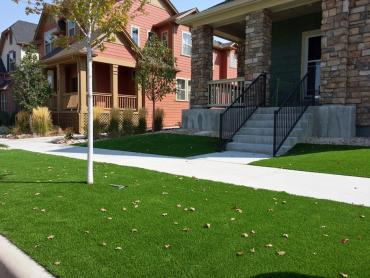 Synthetic Grass Cost Thornton, Colorado Home And Garden, Front Yard Landscape Ideas artificial grass