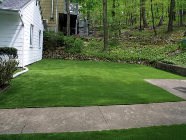 Artificial Grass Photos: Synthetic Lawn Coaldale, Colorado Backyard Deck Ideas, Front Yard Design