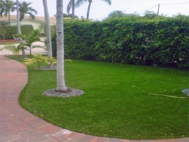 Artificial Grass Photos: Synthetic Turf Keota, Colorado Design Ideas, Front Yard Design