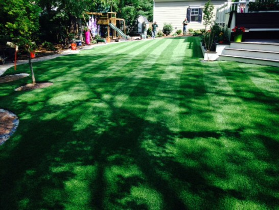 Artificial Grass Photos: Synthetic Turf La Jara, Colorado Landscape Photos, Backyard Designs