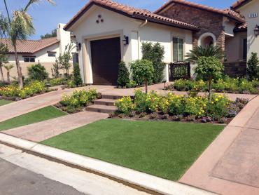 Artificial Grass Photos: Synthetic Turf Lakewood, Colorado Backyard Playground, Front Yard Landscaping