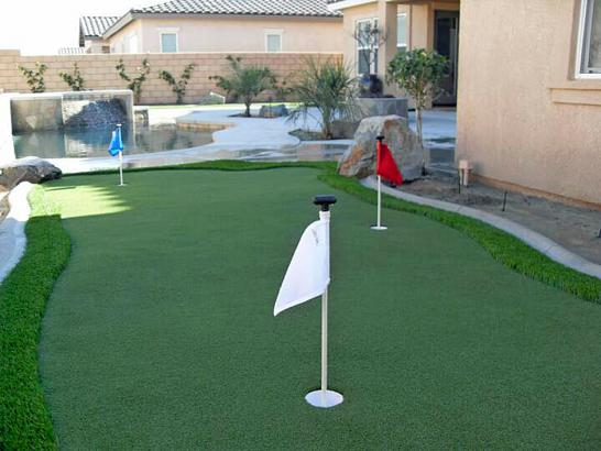 Artificial Grass Photos: Synthetic Turf Snowmass Village, Colorado Putting Green Grass, Small Backyard Ideas