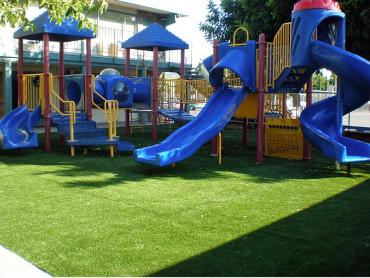 Artificial Grass Photos: Synthetic Turf Supplier Capulin, Colorado Indoor Playground, Commercial Landscape