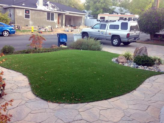 Artificial Grass Photos: Synthetic Turf Supplier Coal Creek, Colorado Backyard Playground, Front Yard Ideas