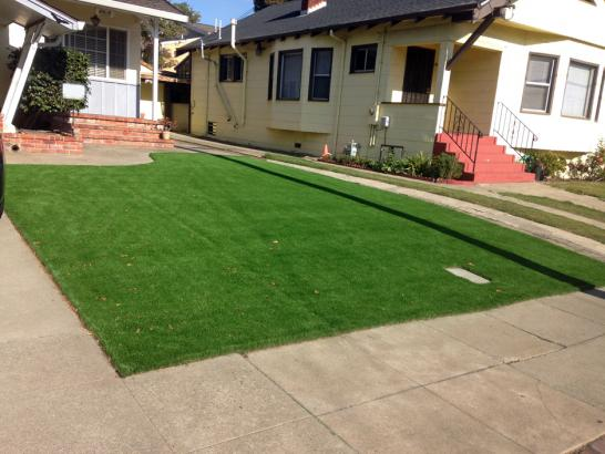 Artificial Grass Photos: Synthetic Turf Supplier Granby, Colorado City Landscape, Front Yard Ideas