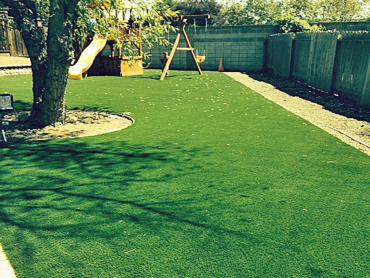 Artificial Grass Photos: Synthetic Turf Supplier Kit Carson, Colorado Landscaping, Backyard