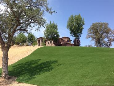 Synthetic Turf Supplier Peyton, Colorado Lawns, Front Yard Landscaping Ideas artificial grass
