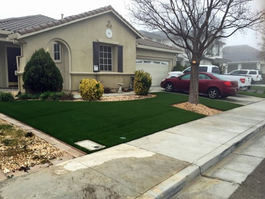 Artificial Grass Photos: Turf Grass Craig, Colorado Garden Ideas, Front Yard Landscaping Ideas