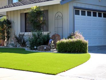 Artificial Grass Photos: Turf Grass Two Buttes, Colorado Garden Ideas, Front Yard